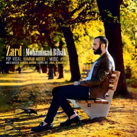 Mohammad Bibak – Zard (Video)
