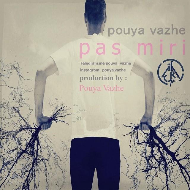 Pouya Vazhe – Pas Miri